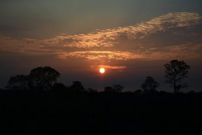 Coucher de soleil Pantanal