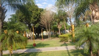 des parcs dans les villes