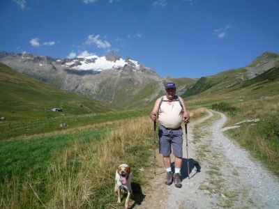 Sur les chemins des Alpes