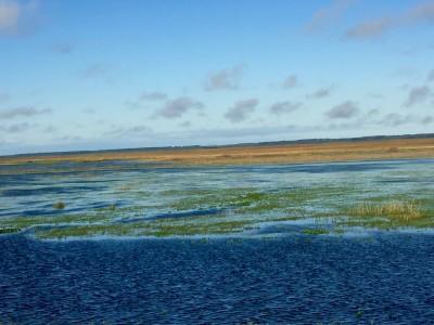 La réserve de Taim inondée