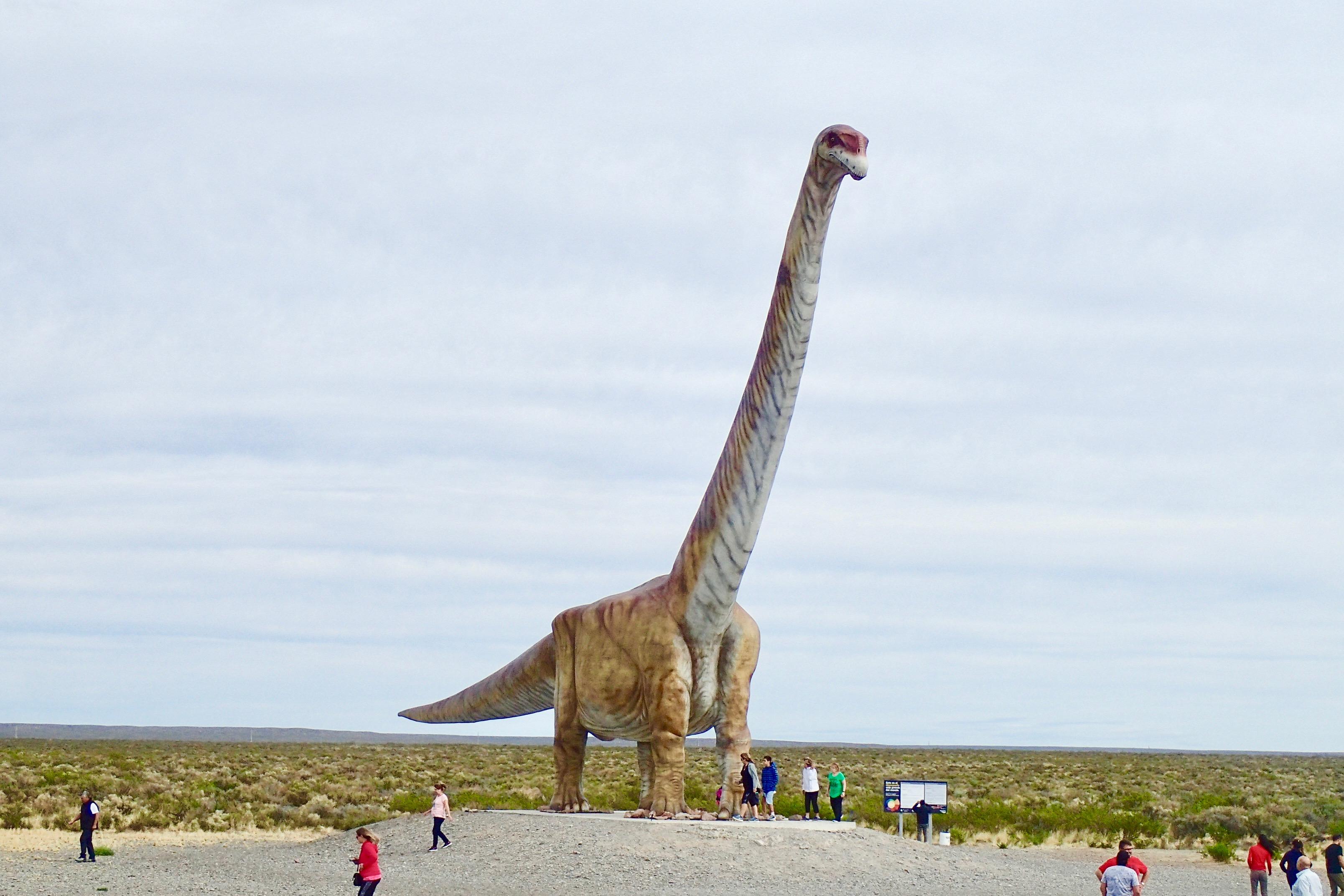 C'est parait-il le plus grand du monde