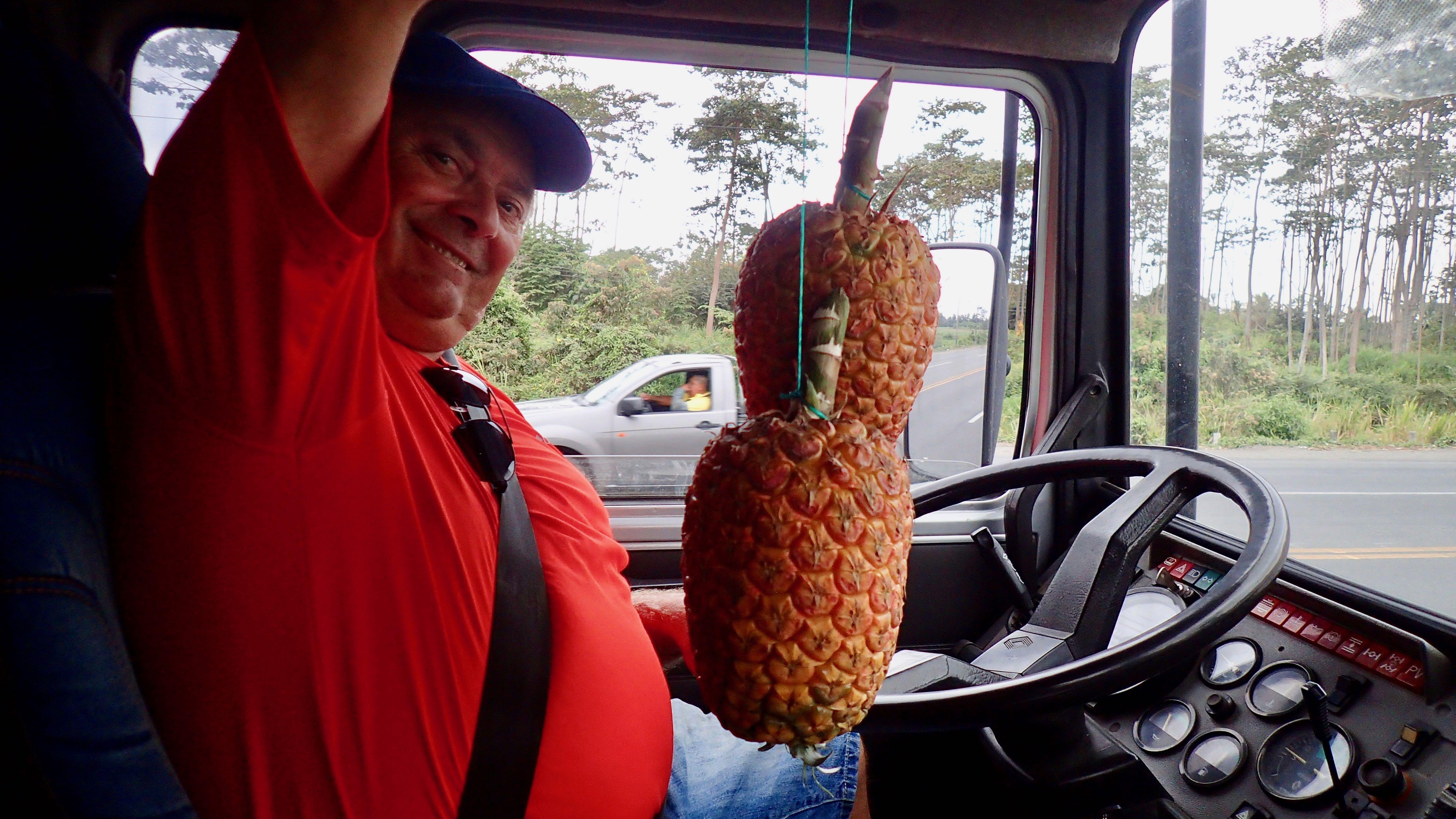 + 2kg chaque ananas !