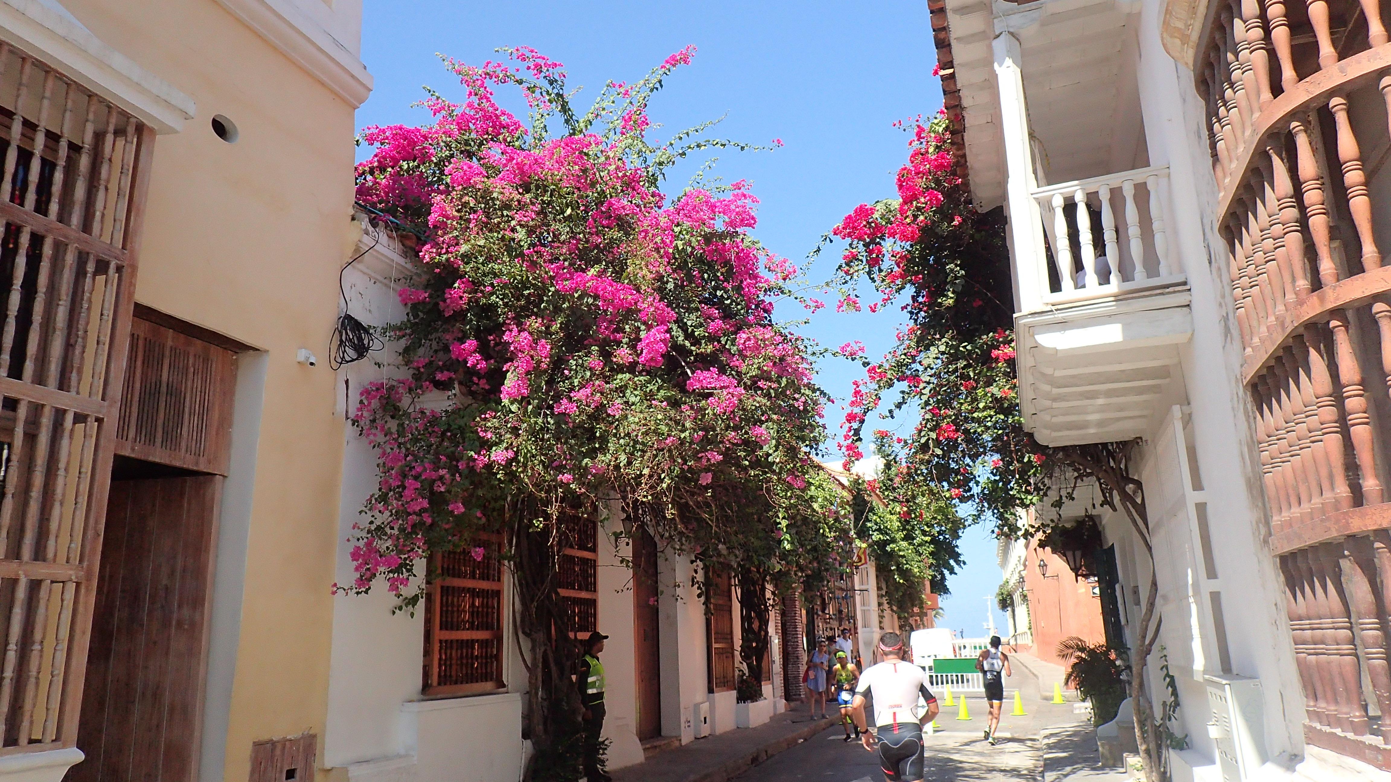 La place Bolivar